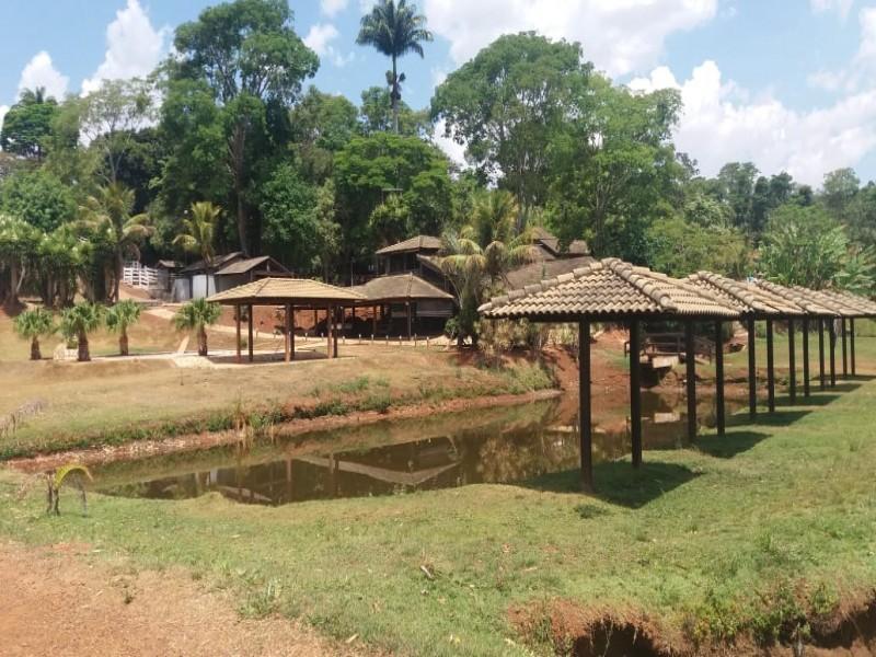 Ribeirão Preto - d596d3.jpeg